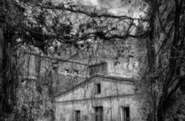 Fotografía en Blanco y Negro-039
