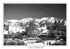 Fotografía en Blanco y Negro-062