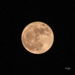 Fotografía Nocturna-091